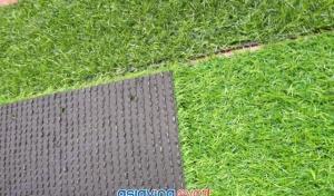 Thanh lý thảm cỏ nhân tạo sân vườn giá rẻ tại Bà Rịa Vũng Tàu